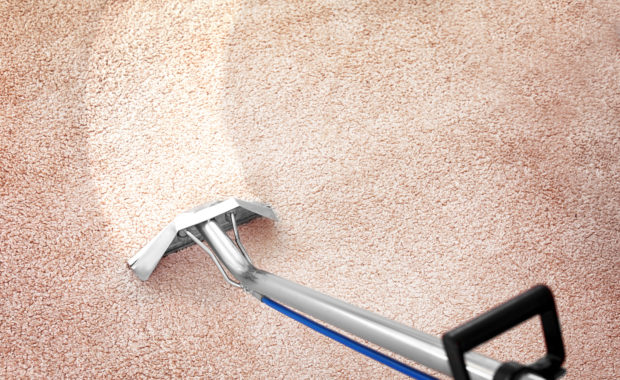 Your Carpet Cleaner Should Be Licensed & Insured. Is Yours?