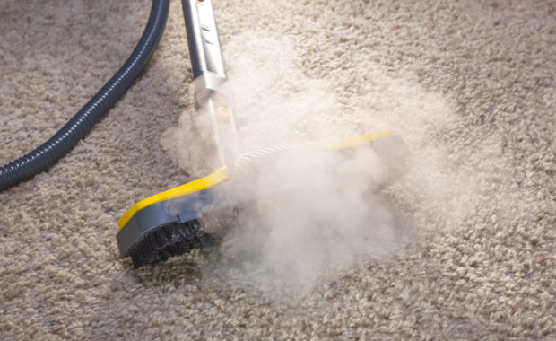 Carpet Cleaning Companies Should ALWAYS Screen Their Employees…